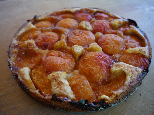 almond apricot cake - trust in kim