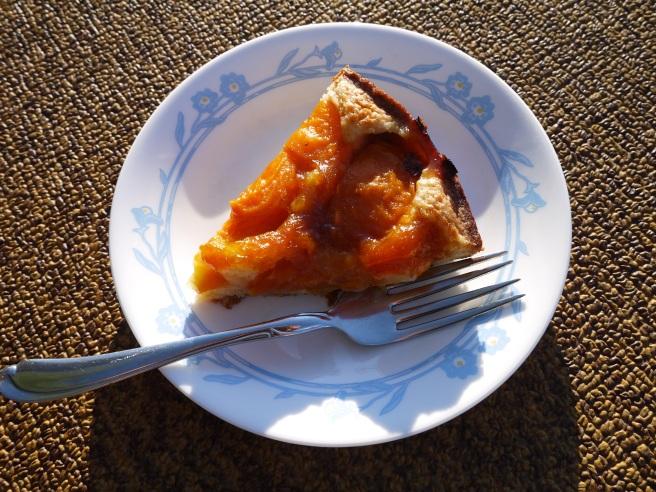 apricot almond cake slice - trust in kim