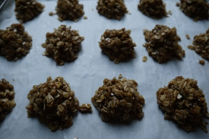raw oat cookies - trust in kim