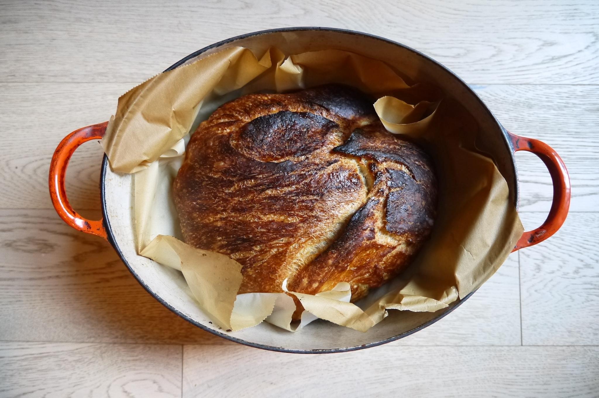 crusty no-knead bread - trustinkim