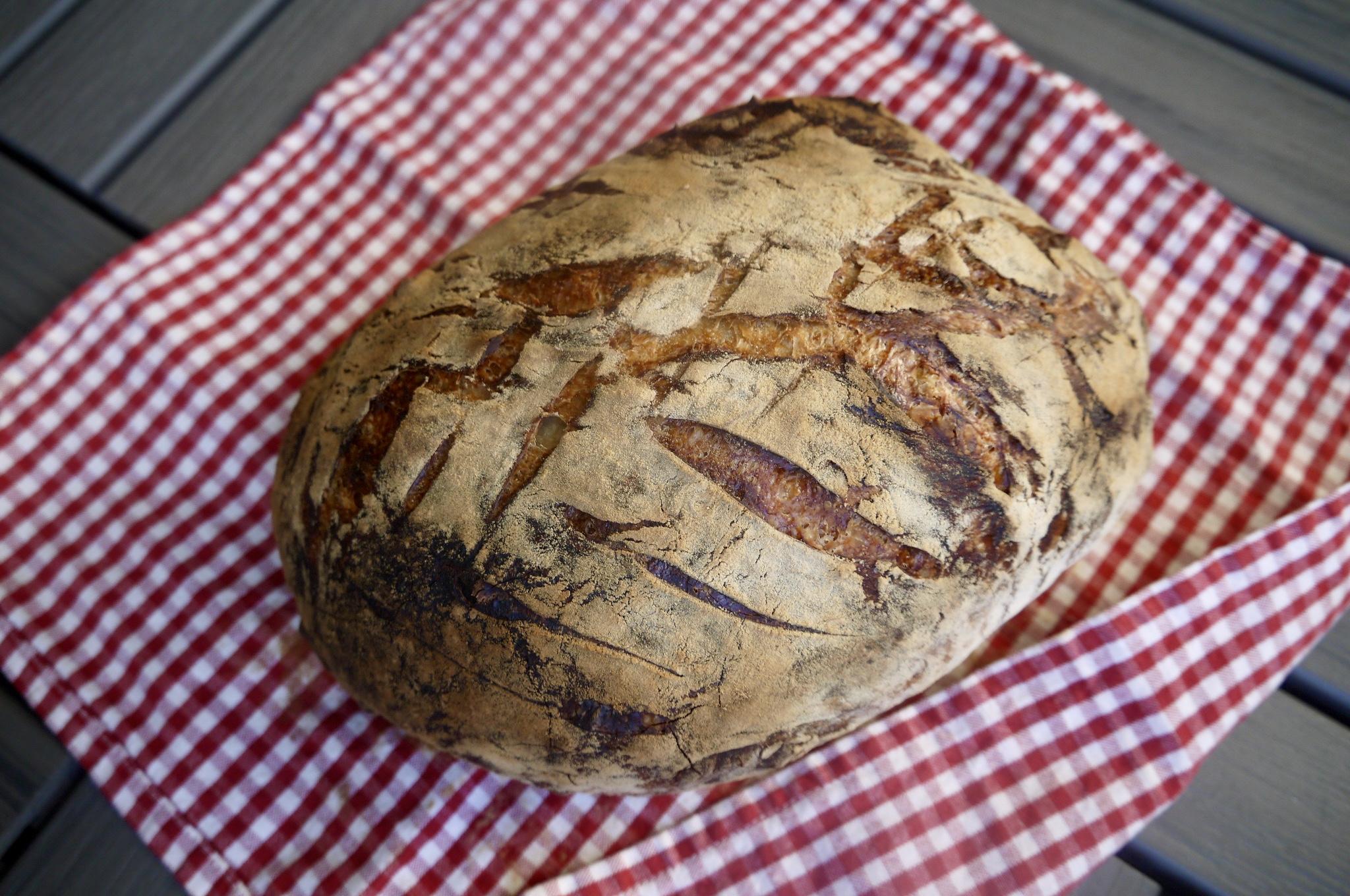 no-knead bread - trustinkim