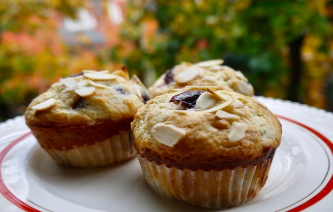 sour cherry almond muffins - trustinkim.com