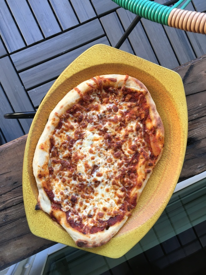 no knead pizza dough - trustinkim.com