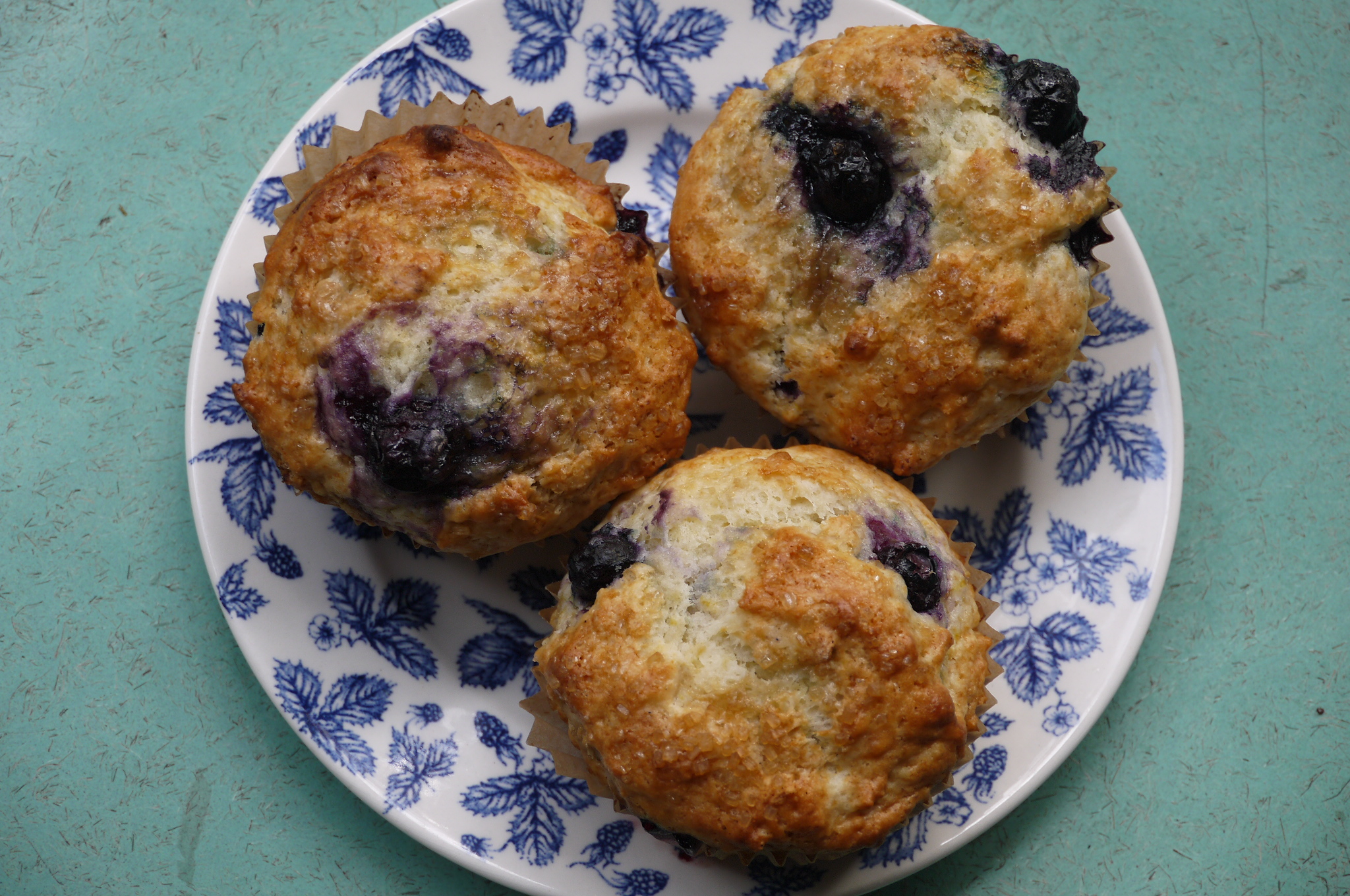 blueberry muffins - trustinkim.com